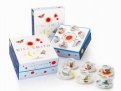 Kiki Smith 6 Espresso Cup Gift Set